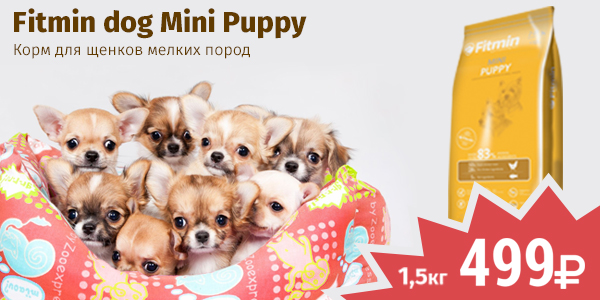 Fitmin Puppy 1,5кг 499 руб
